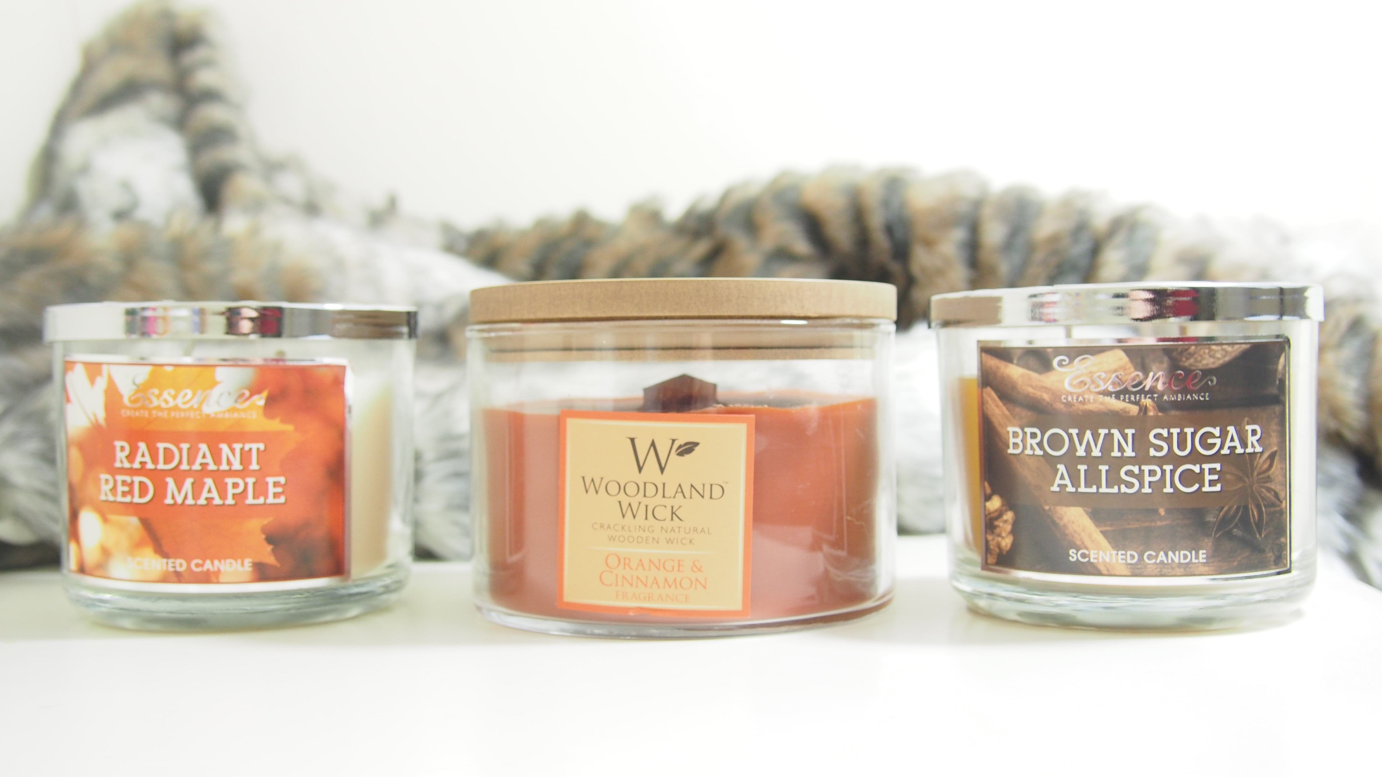 Cactus Blossom 3 Wick Candle